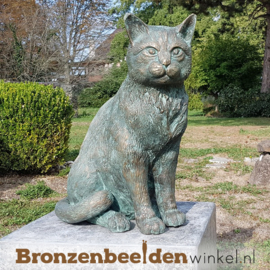 Groot kattenbeeld in brons  BBWR89018