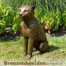 Bronzen luipaard zittend BBW1138