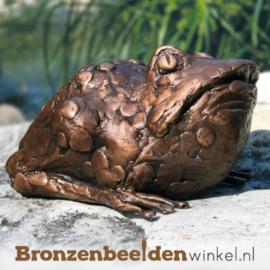 Bronzen beeld pad BBW37005