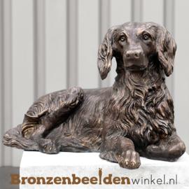 Beeld Drentse Patrijs hond BBW37243