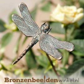 Bronzen grote libelle beeld BBWR88707
