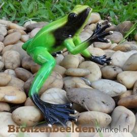 Bronzen groene regenwoudkikker beeld BBW0985BR