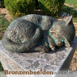 Bronzen slapende kat beeld BBWR89020