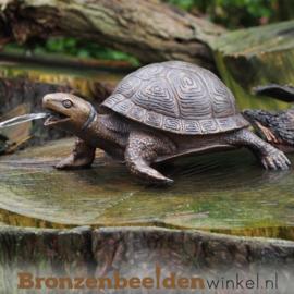 Spuitfiguur schildpad als fontein BBW3392br