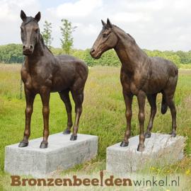 Twee bronzen paarden beelden BBW1309