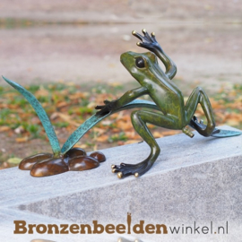 Bronzen kikker (fontein) BBW1936BR