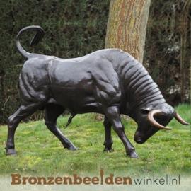 Bronzen stier beeld BBW82058