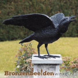 Bronzen raaf beeld BBW50418