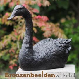 Zwaan beeld in brons BBW1344br
