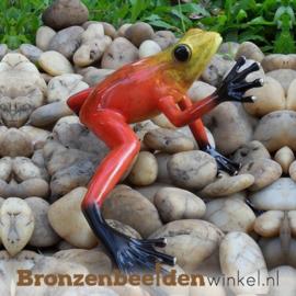 Bronzen beeld rode regenwoudkikker BBW0984BR