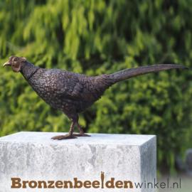 Beeld fazant vogel in brons BBW1329br