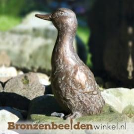 Bronzen eend BBW87092