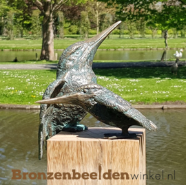 Tuinbeeld ijsvogeltjes BBW88321-89004