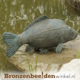 Beeld Karper vis BBWR88251