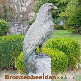 Bronzen rode wouw havik beeld BBWR88758