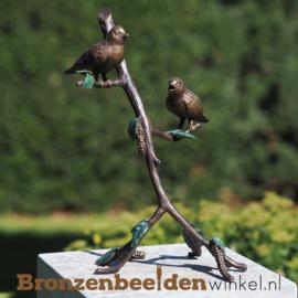 Twee vogeltjes op tak in brons BBW1372br
