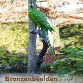 Tuinbeeld papegaai BBW1147g