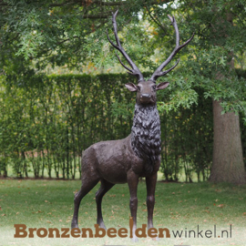 Groot bronzen herten beeld BBW47232