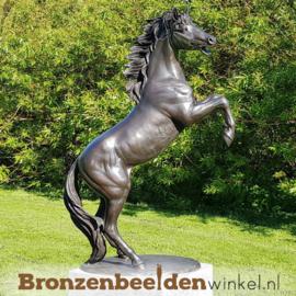 Tuinbeeld steigerend paard BBW1096br