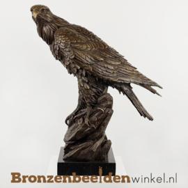 Bronzen adelaar beeld BBW00YYbr17