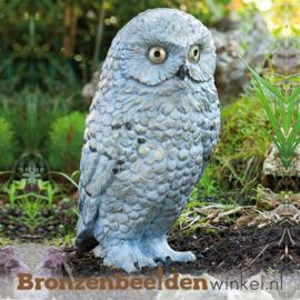 Sneeuwuil beeld in brons BBWR88633