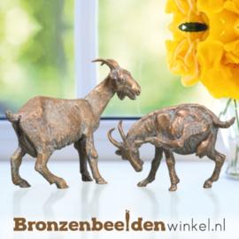Bronzen geiten beelden BBW76999