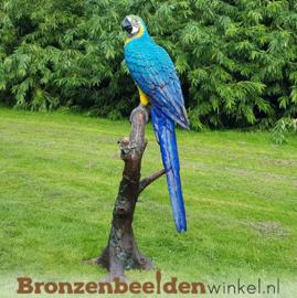 Bronzen beeld papegaai BBW1147p