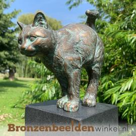 Bronzen kat beeld BBW37212