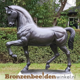 Bronzen beeld dressuurpaard BBW1047br
