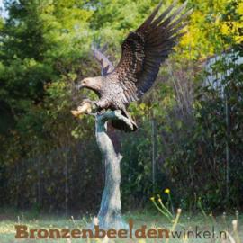 Tuinbeeld roofvogel zeearend op stam BBW1243br