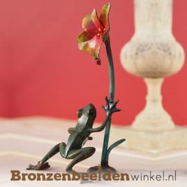 Bronzen kikker BBW1739BR