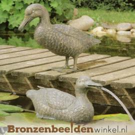 Tuinbeeld eenden paar BBWR88339-40