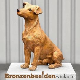 Beeld Jack Russel hond BBW37233