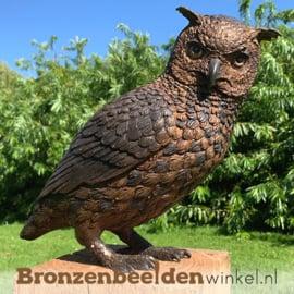 Bronzen uil beeld BBW2213