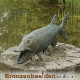 Beeld Snoek vis BBWR88250