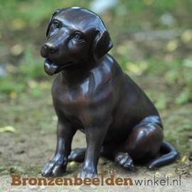 Blijvende herinnering overleden labrador BBW0678