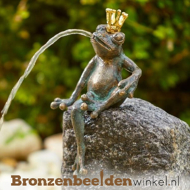 Koningskikker beeld Maarten BBWR89016