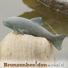 Beeld Forel vis in brons BBWR88035
