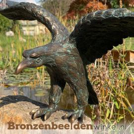 Bronzen adelaar beeldje BBWR88363