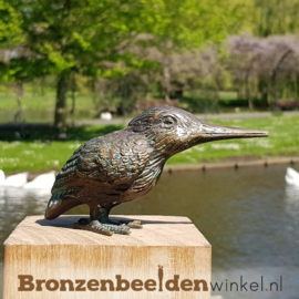 Beeld IJsvogel brons BBW89003