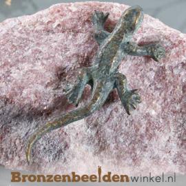Bronzen hagedis beeld BBWR90324