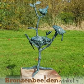 Twee vogeltjes op tak met nestje BBW1814br