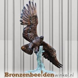 Adelaar beeld brons BBW1151br