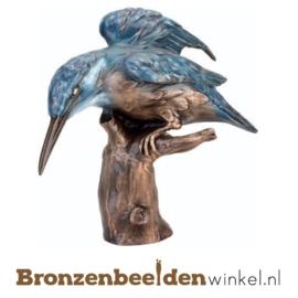 Bronzen ijsvogel op stam BBWF6057fa