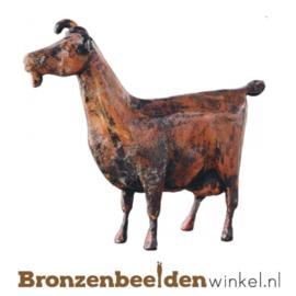 Bronzen geit BBW87177