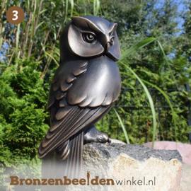 NR 3 | Afscheidscadeau meester ''Bronzen uil'' BBW37234