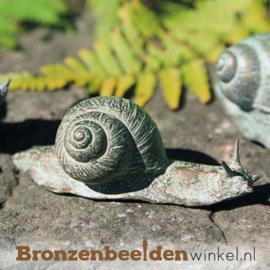 Beeld slak in brons BBW37030