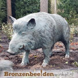 Tuinbeeld zwijn in brons BBWR88458