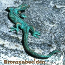 Bronzen salamanders en hagedissen