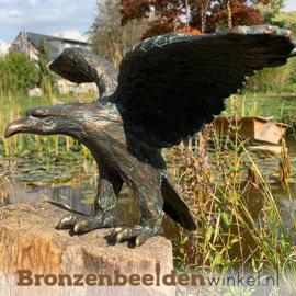 Bronzen arend beeld BBWR88363